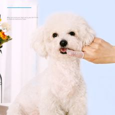 Drop Shipping Super Soft Pet Finger Toothbrush Teddy Dog Brush Baby Breath Tartar Teeth Tool Cat Cleaning Pet Supplies